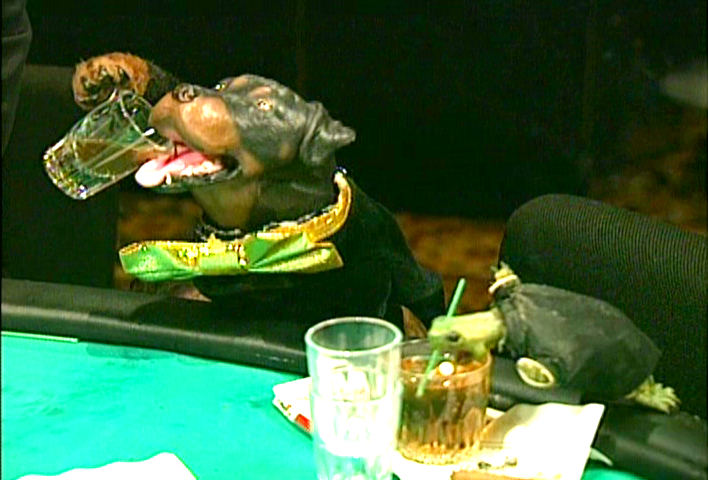 Triumph, the Insult Comic Dog on the TV Funhouse series