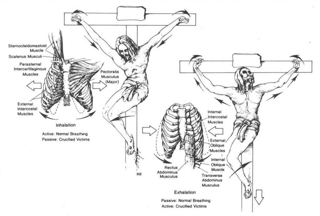jesus of nazareth crucifixion photo gallery 17