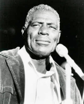 baying at the moon a howlin wolf fan page